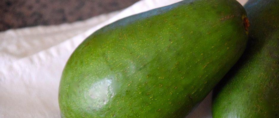 avocado in cucina: proprietà e ricetta